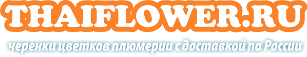 thaiflower.ru
