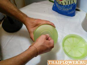 Выращивание Плюмерии горшок с дренажем
